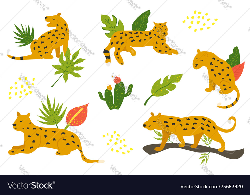 Set of hand drawn leopards and tropical leaves