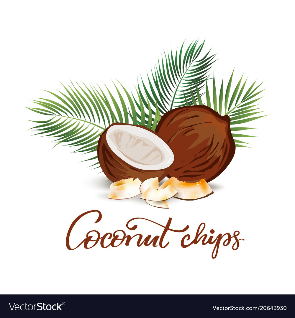 Coconut and palm leaves