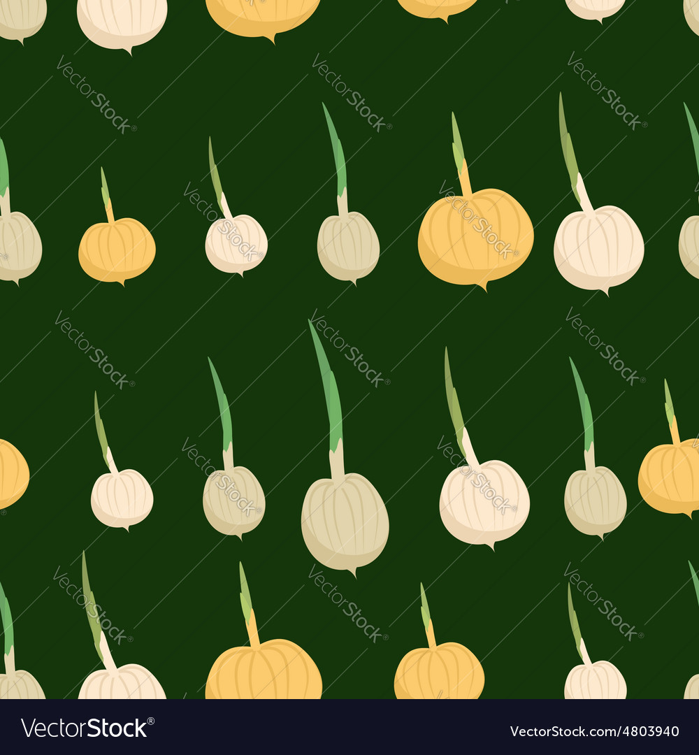Background of the onion bulbs seamless pattern of