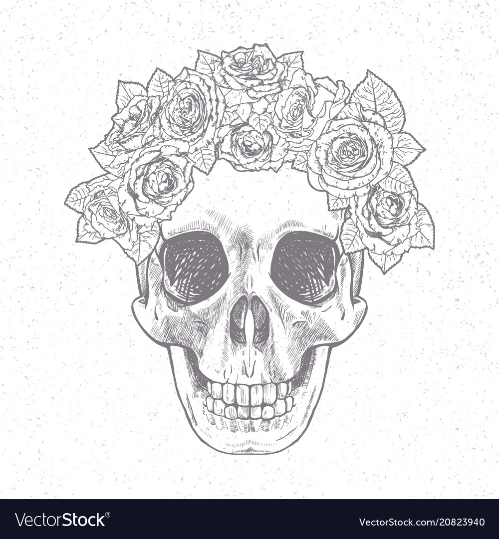 Vintage hand drawn skull with roses