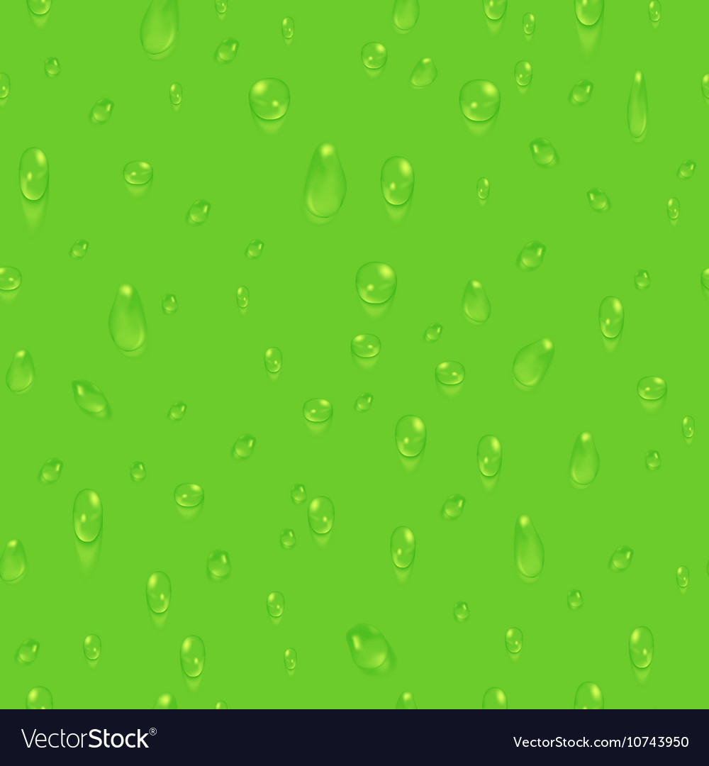 Green natural seamless background with water drops vector image