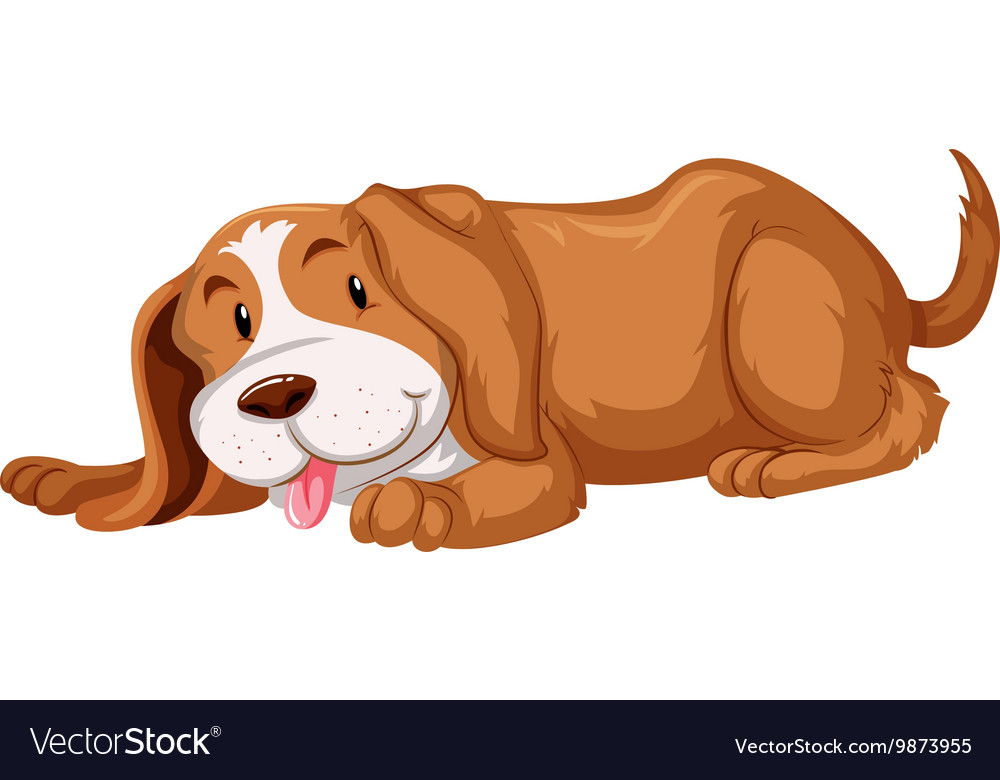 Cute dog with brown fur vector image