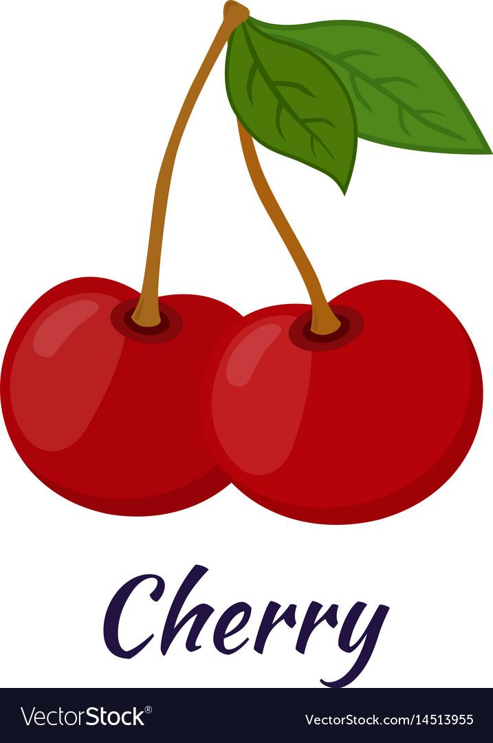 Garden fresh cherry sweet berries in flat style