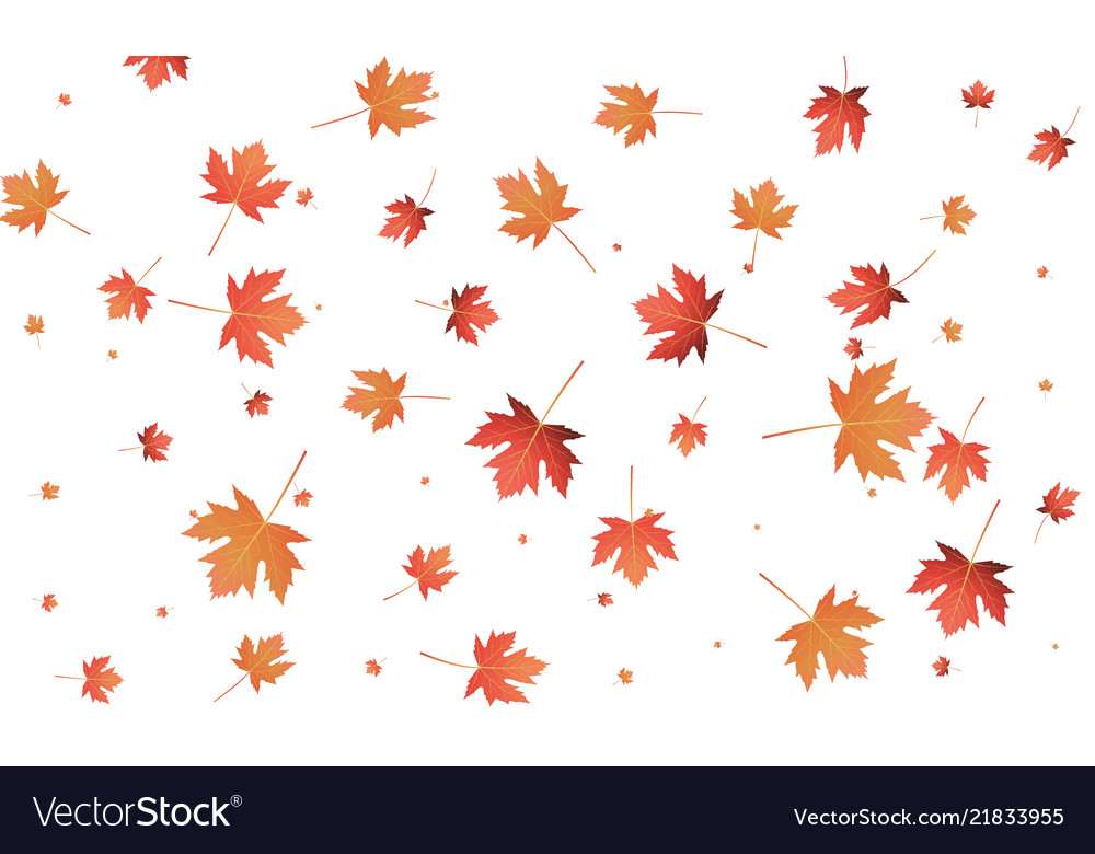 Maple leaves background falling autumn leaves