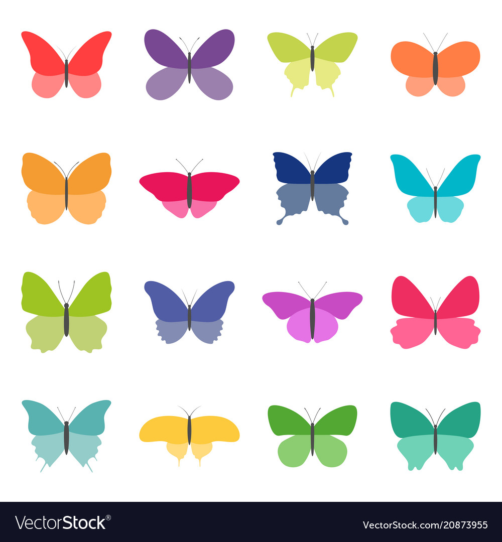 Set of color butterflies on white background