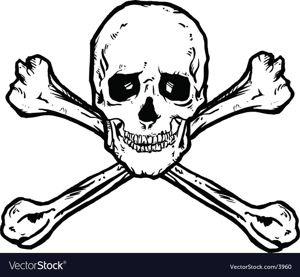 Skull Crossbones Royalty Free Vector Image Vectorstock
