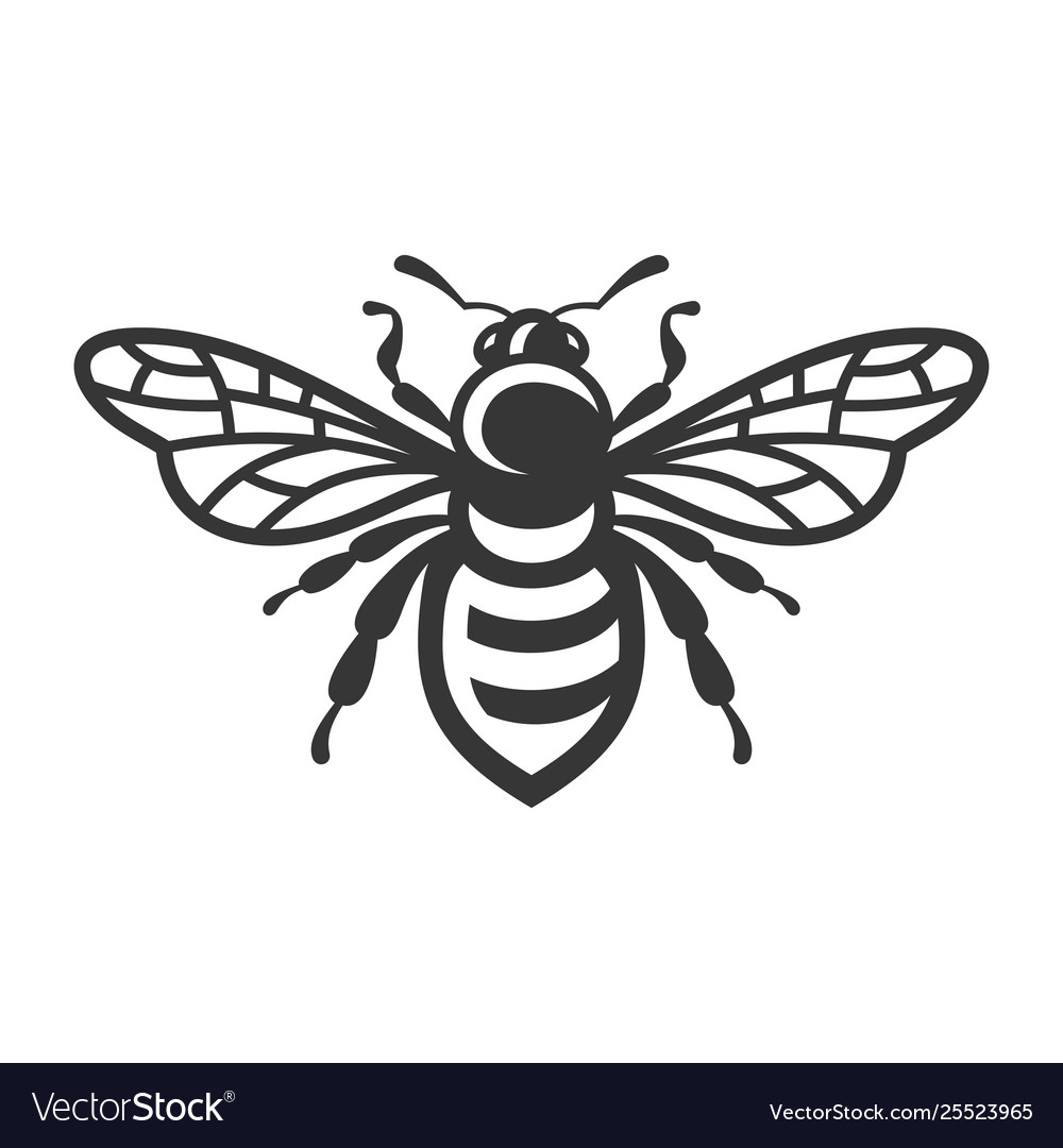 Bee icon bug logo on white background
