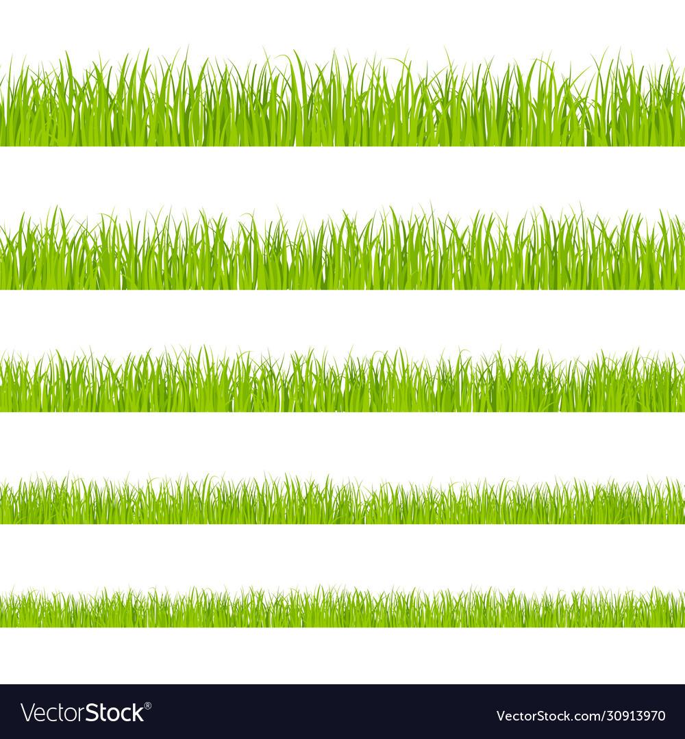 Green grass landscaped lawns meadows border