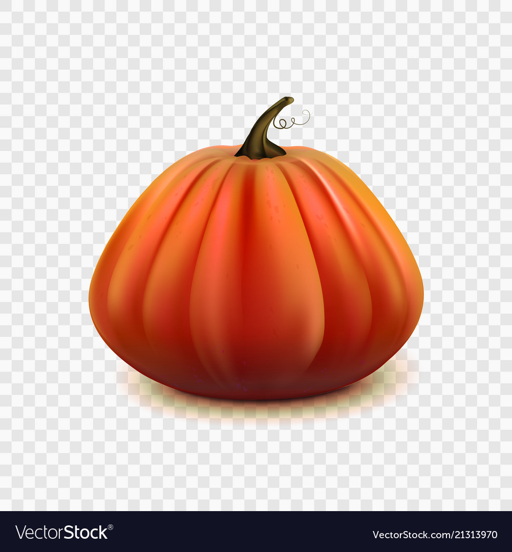 Stock pumpkin isolated on a