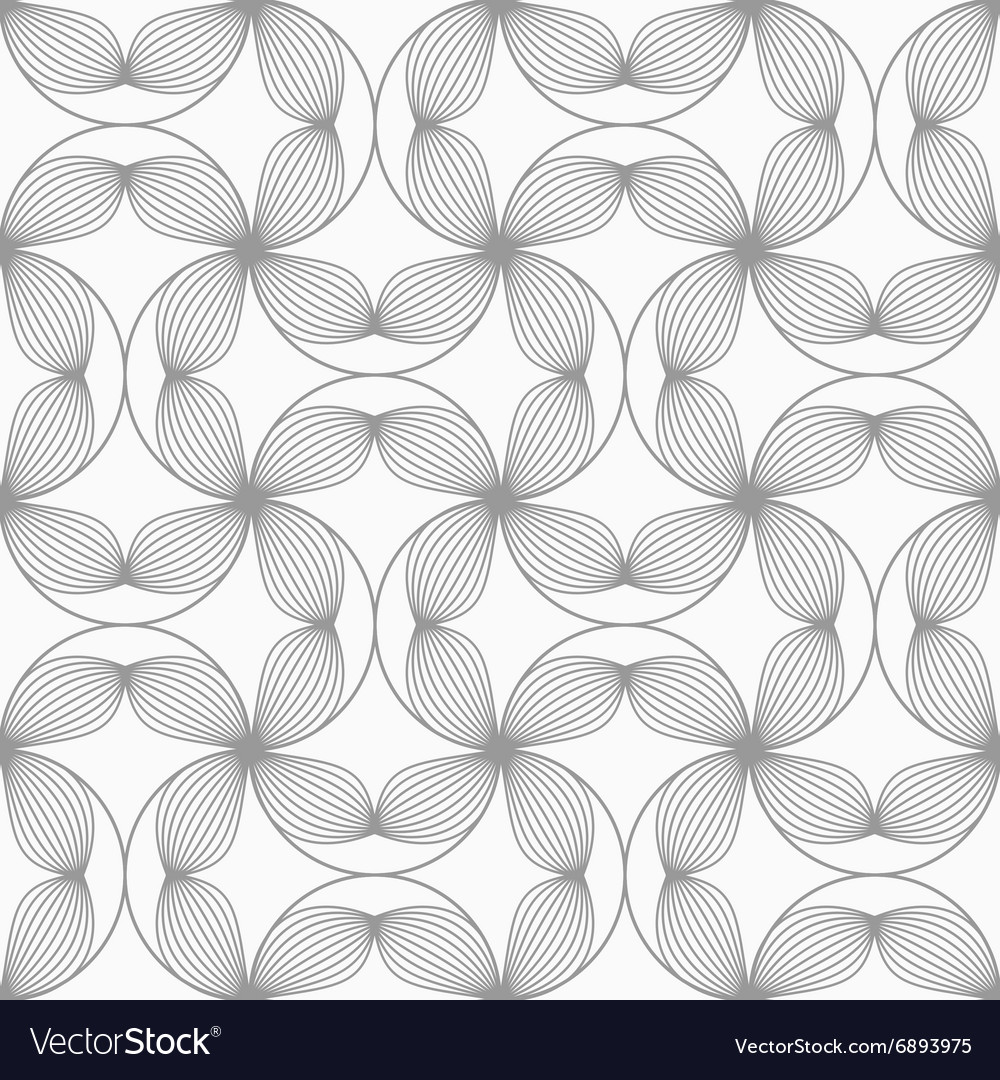 Slim gray striped four pedal flowers connected vector image