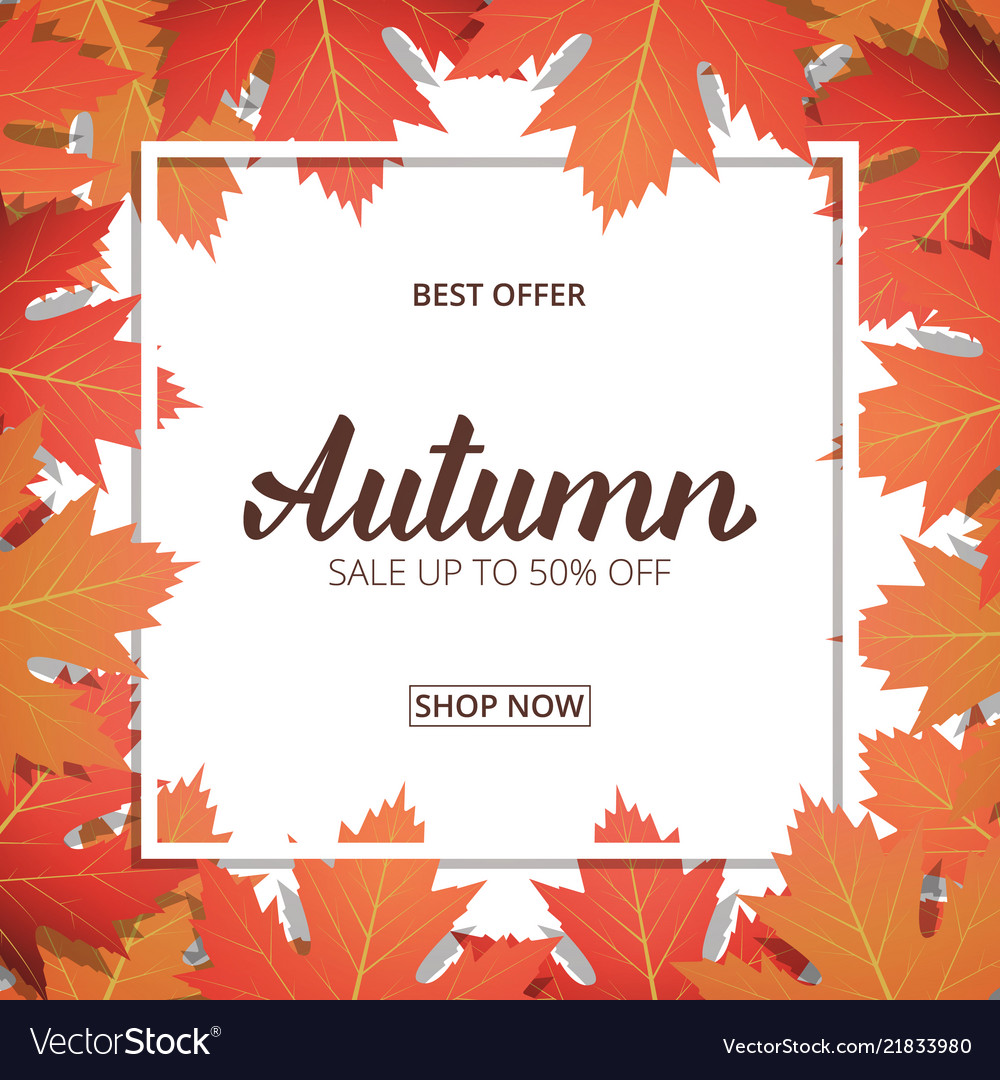 Autumn sale banner with maple leaves frame and