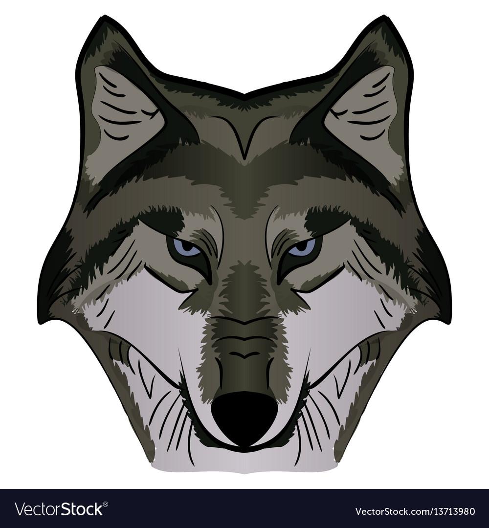 Cartoon mascot image grey wolf head vector image