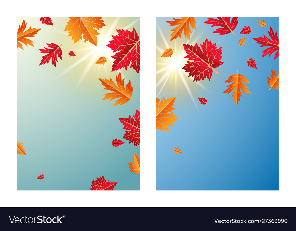 Autumn leaves with sunlight background
