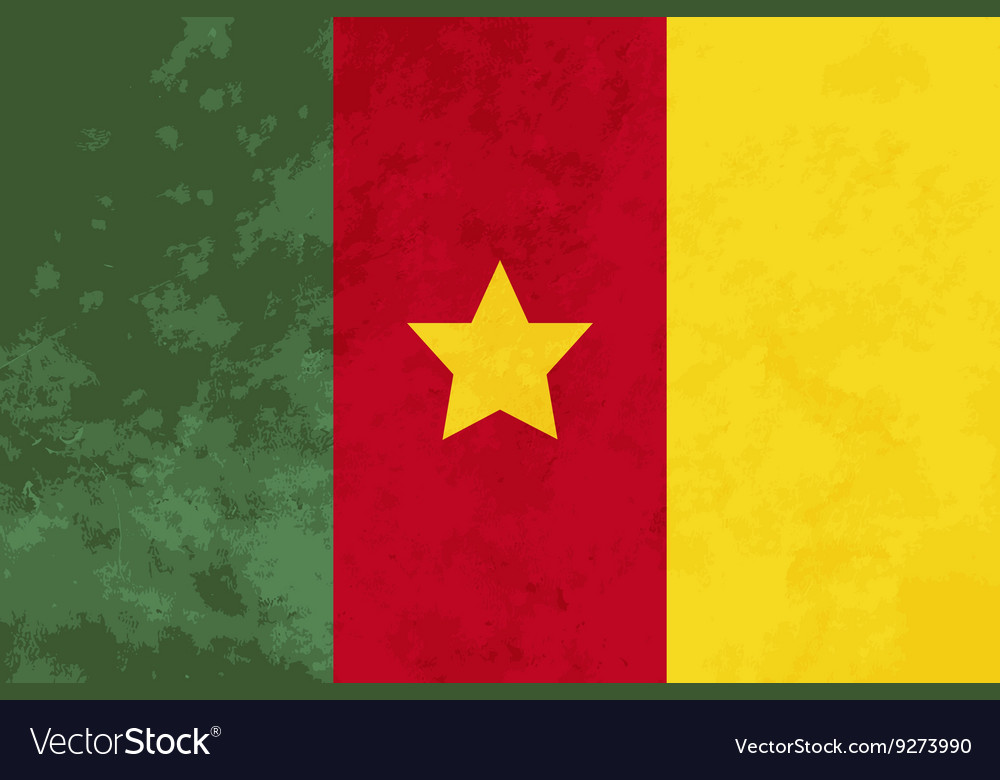 True proportions Cameroon flag with texture