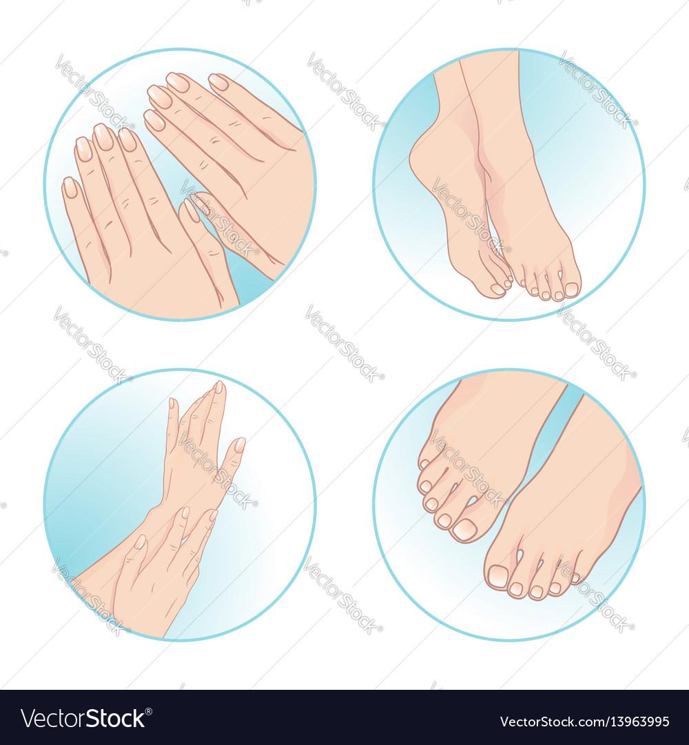Beautiful female hands feet manicure pedicure