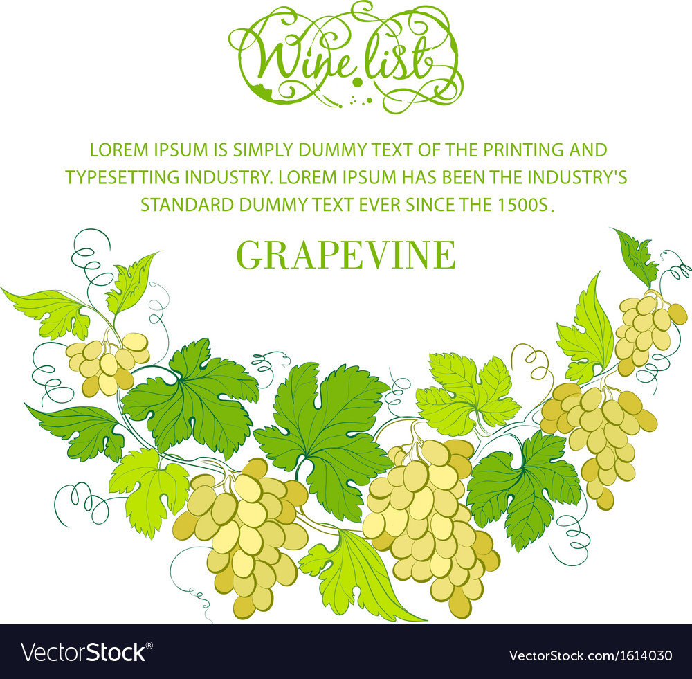 Wine List Design With Grapes Decoration