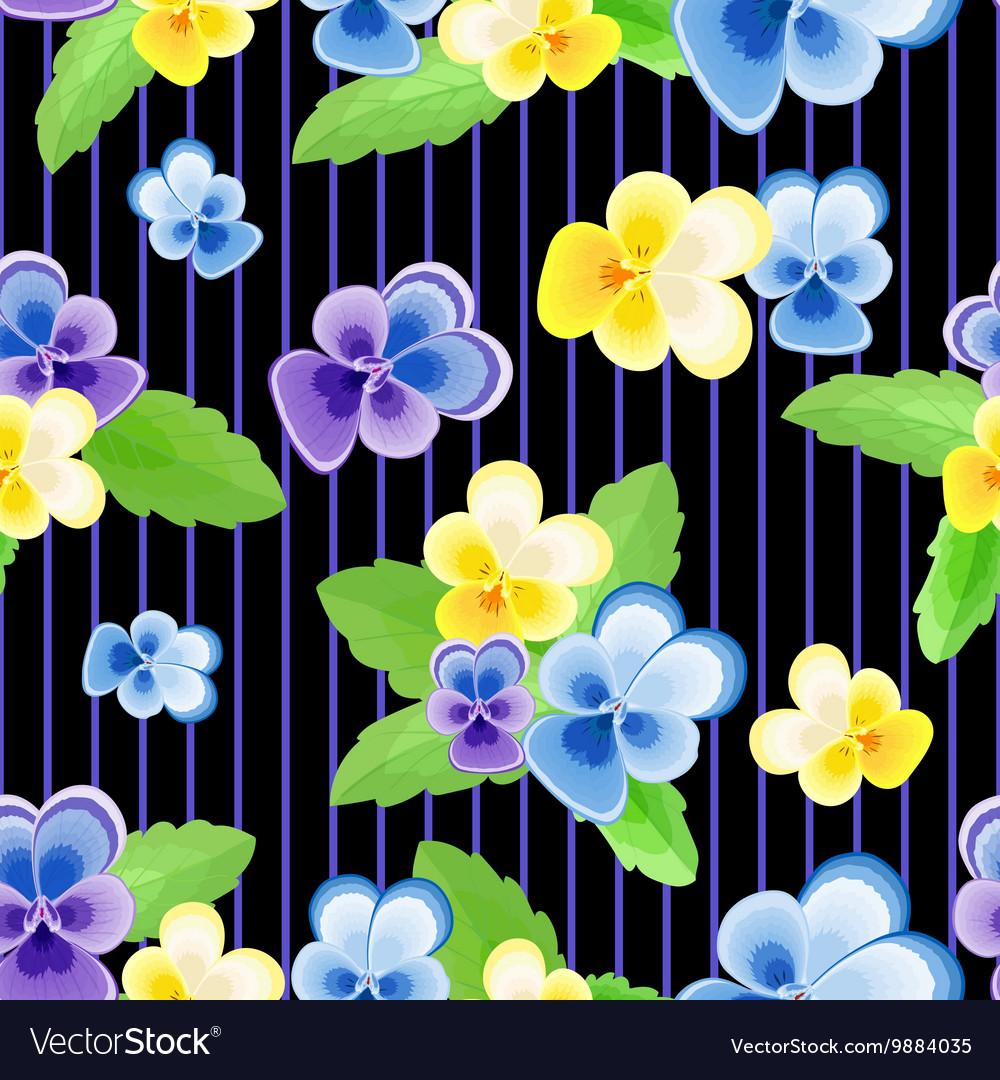 Pansies on strips black background