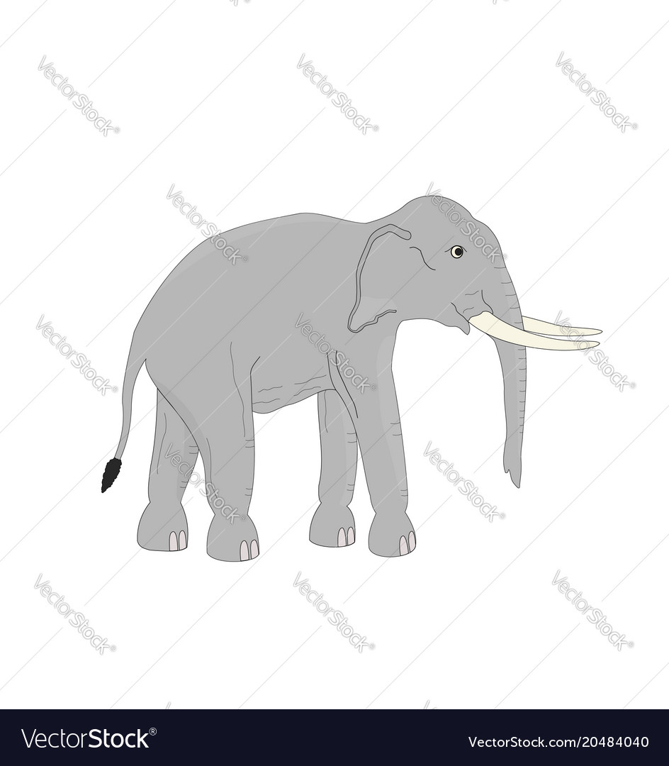 Isoated asia elephant cartoon vector image