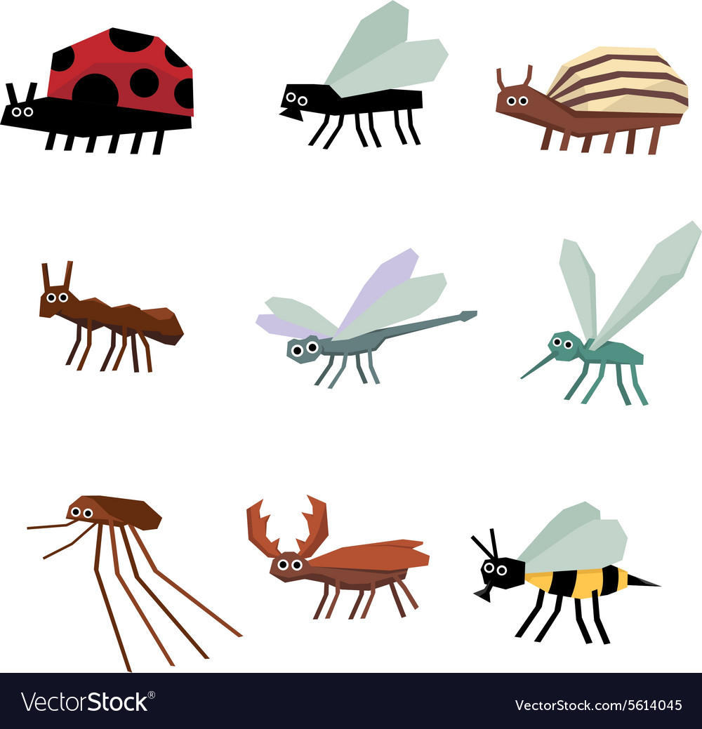 Collection insects cartoon