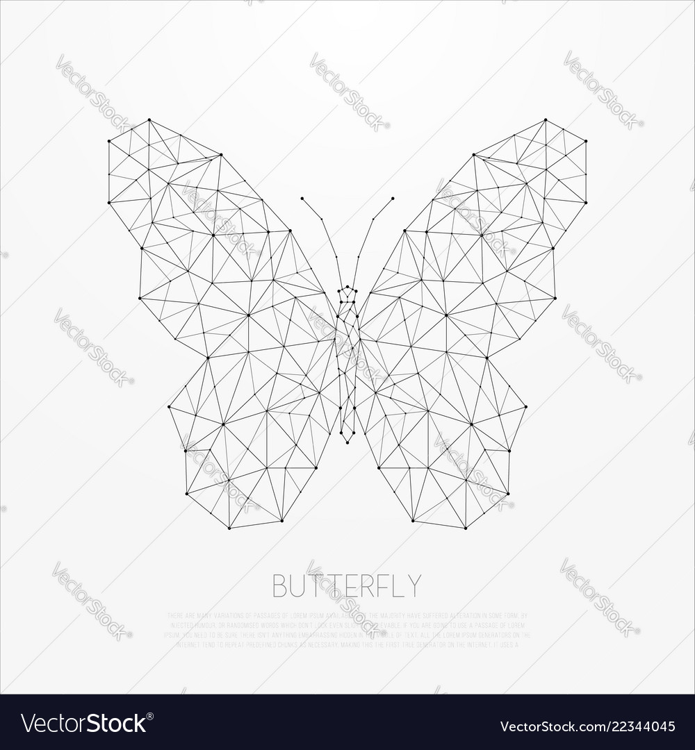 Polygonal insect abstract geometric butterfly