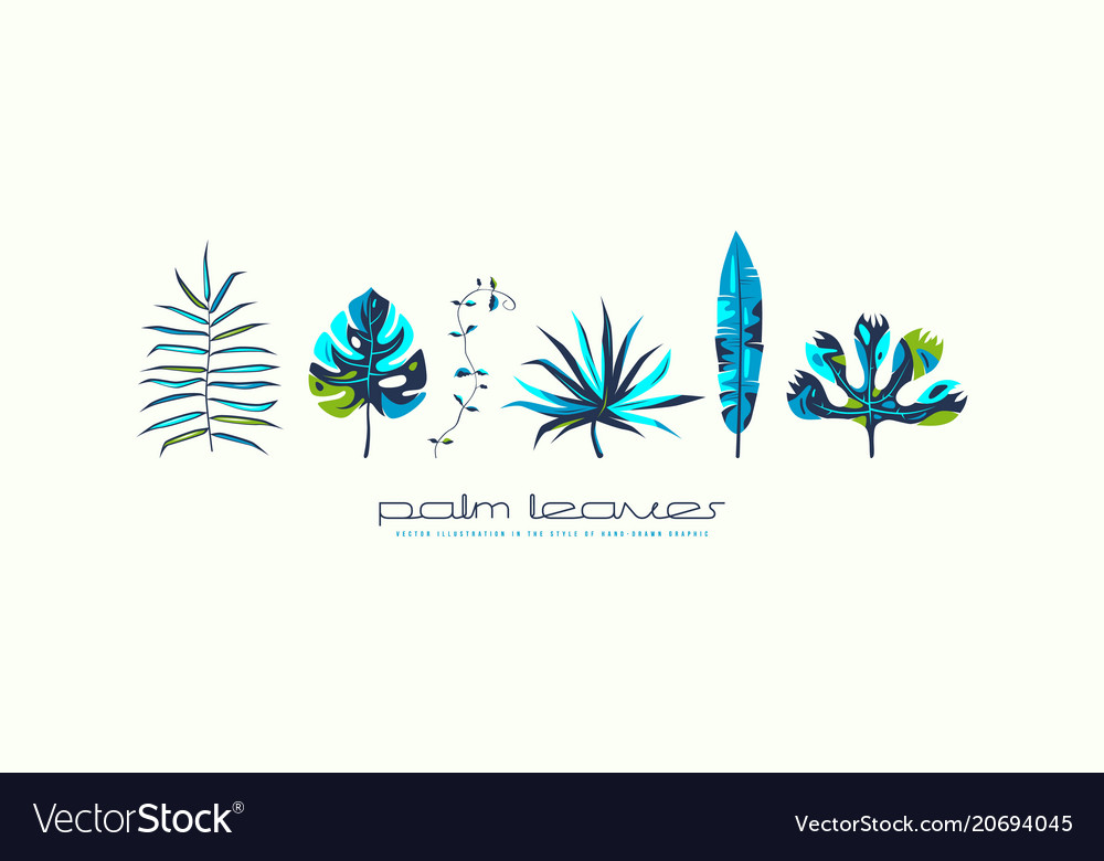 Stock set of tropical plant leaves