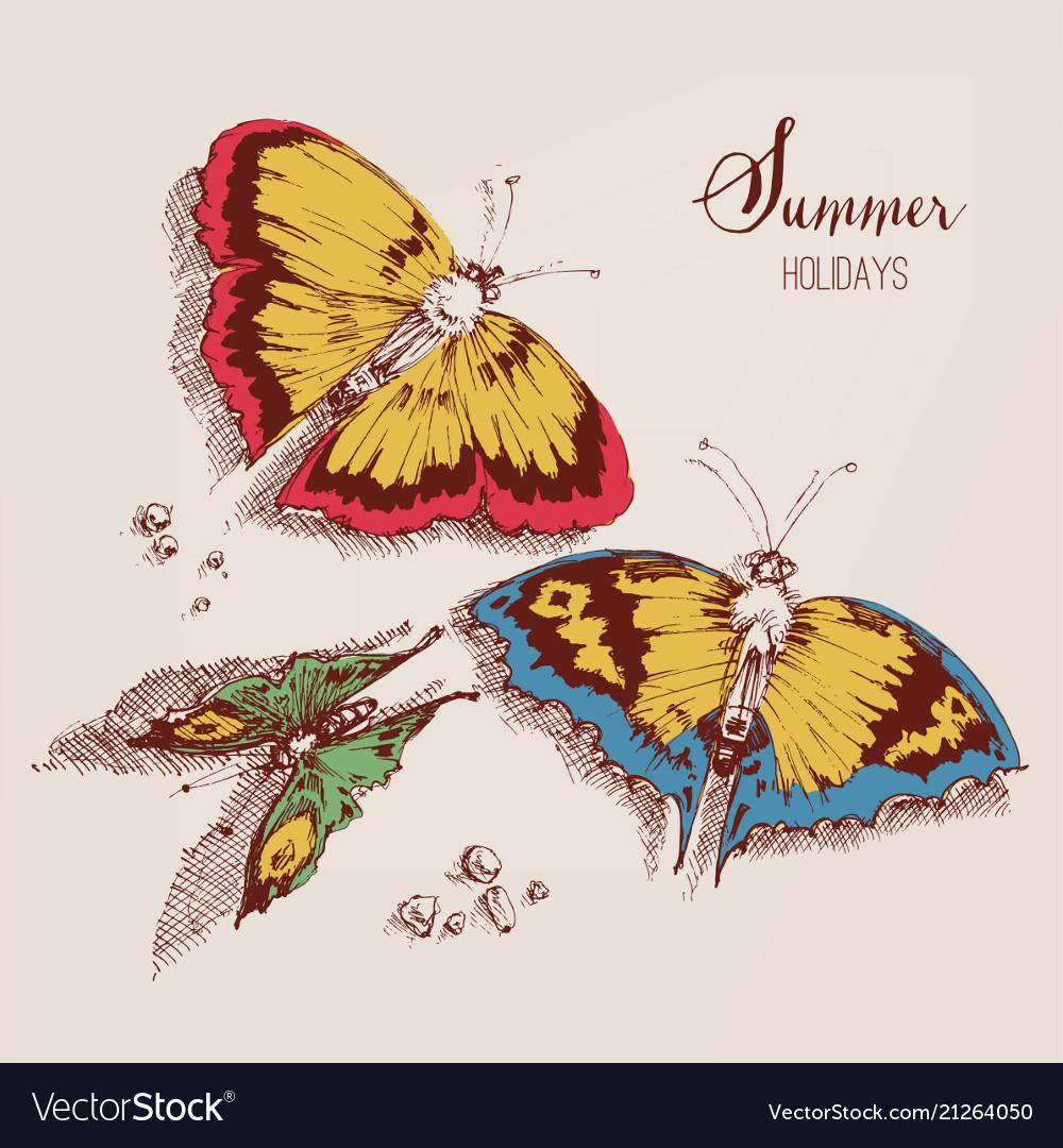 Summer holidays card beautiful butterflies on the