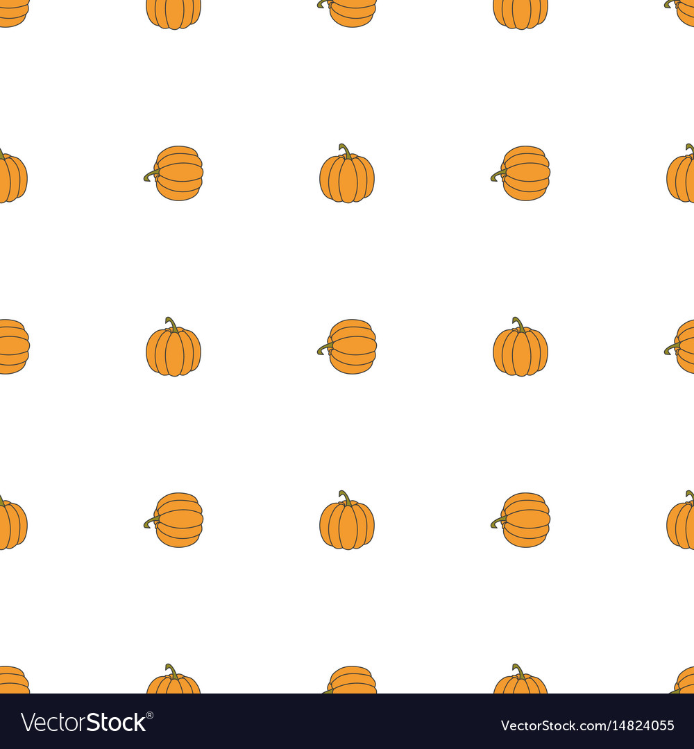 Pumpkin hand drawn on white background hand drawn