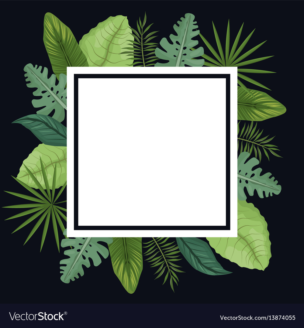 Tropical poster leaves palm decoration