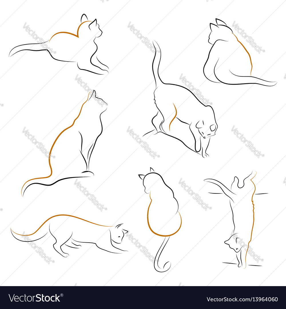 Set of cat icons vector image