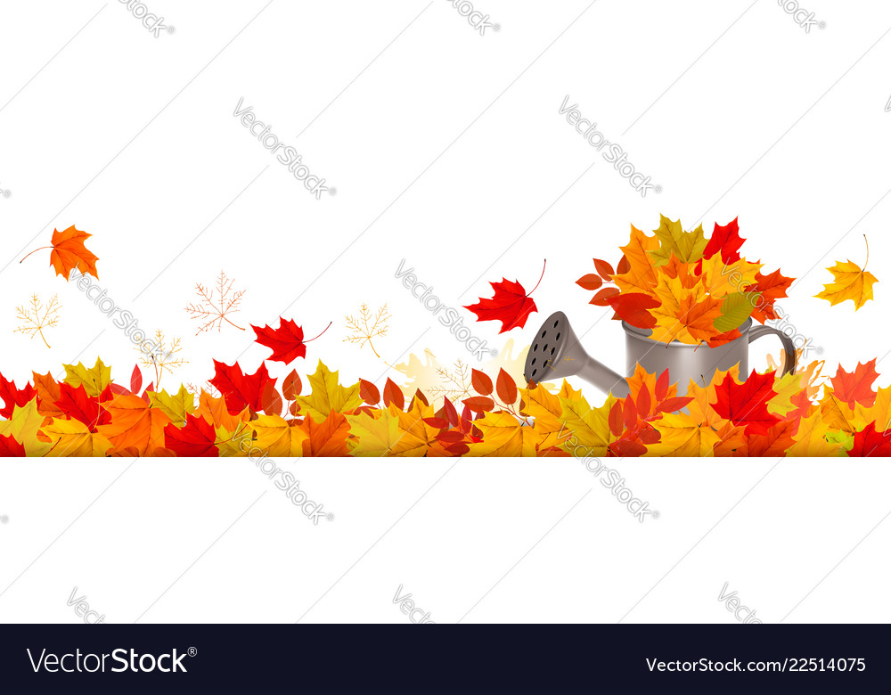 Autumn nature panorama with colorful leaves and