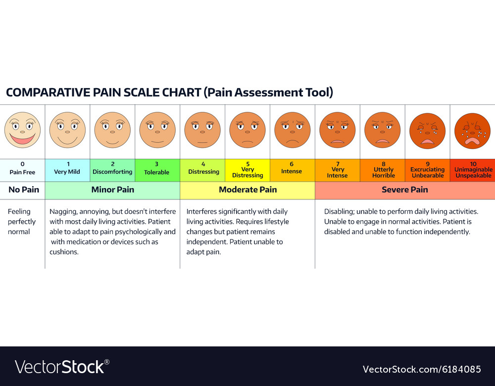 Faces pain scale chart royalty free vector image