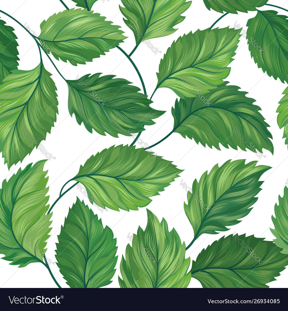 Floral green leaf seamless pattern leaves