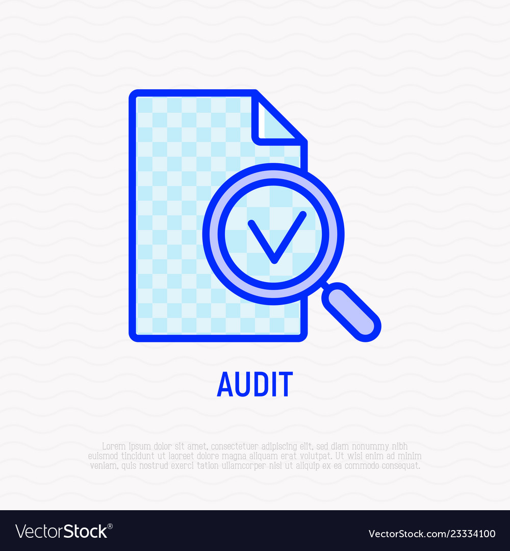 Audit line icon magnifier with mark on document