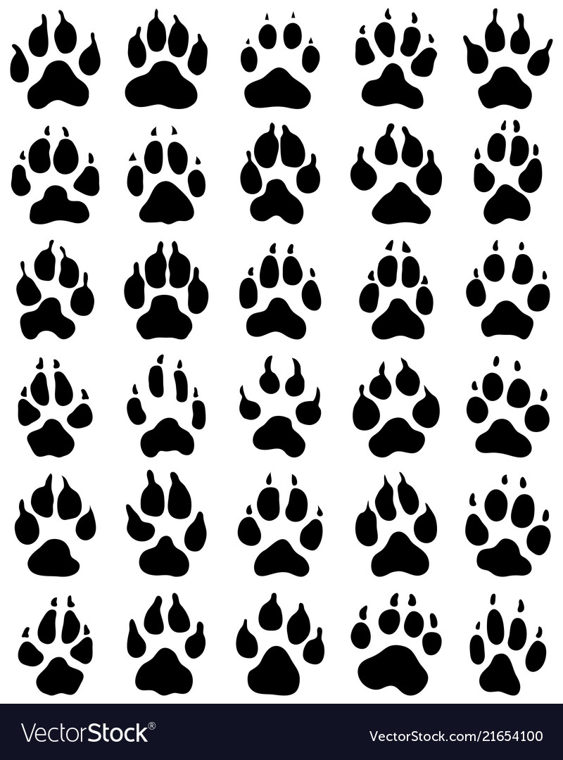 Black print of dogs paws