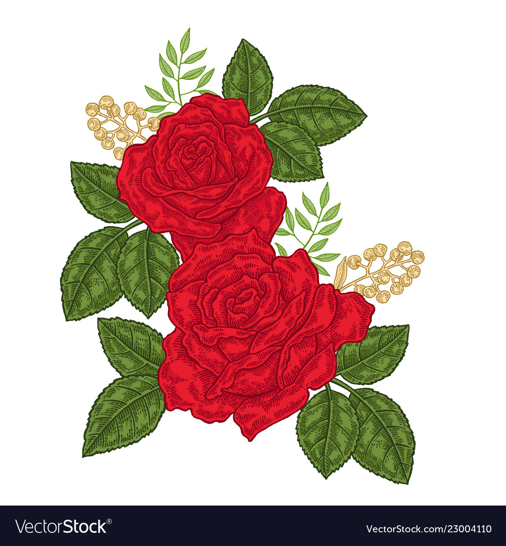 Red roses flowers and leaves in vintage style