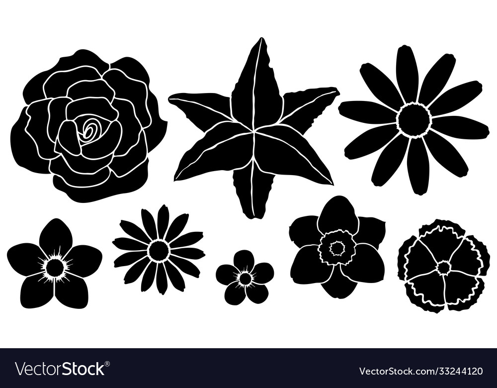 Set silhouettes flowers