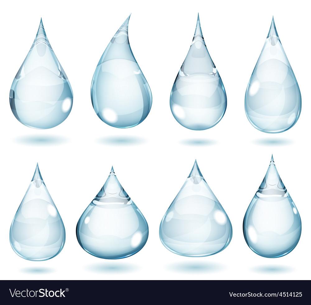 Opaque pale blue drops vector image