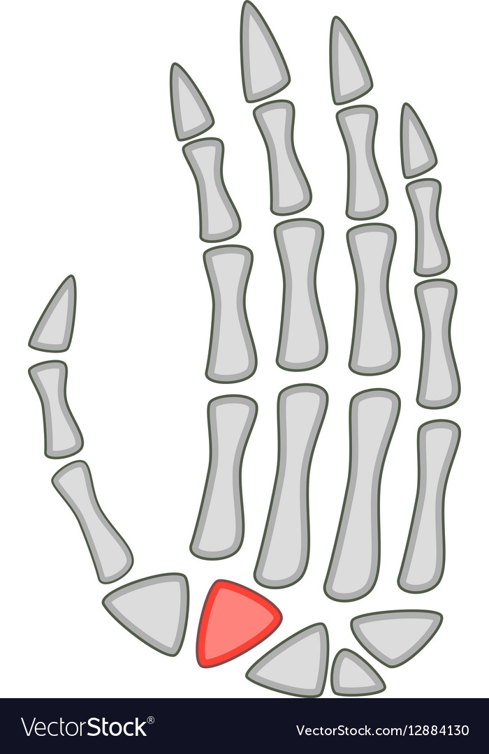 Human Anatomy Hand Palm Icon Cartoon Style Vector Image