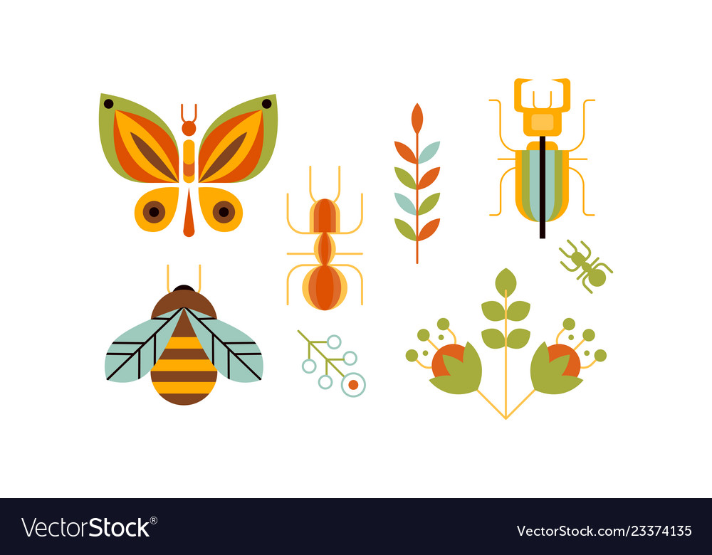 Collection insects and plants butterfly bee
