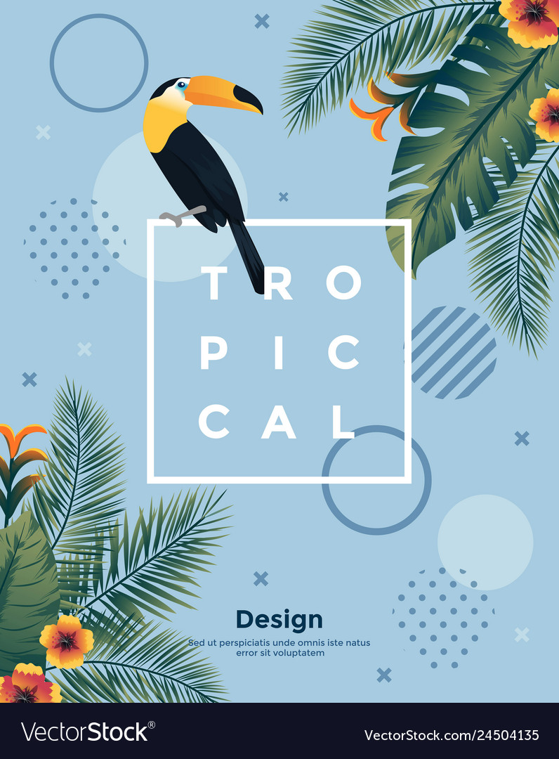 Tropical bakground with frame 4