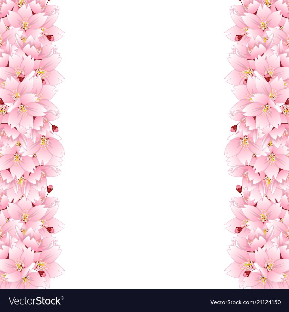 Sakura cherry blossom flower border