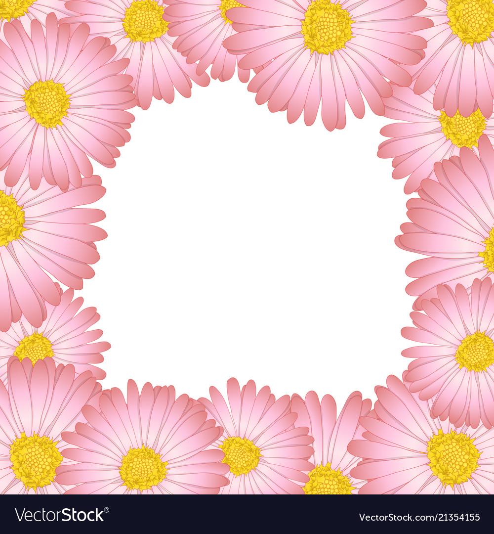 Pink aster daisy flower border royalty free vector image pink aster daisy flower border vector image izmirmasajfo
