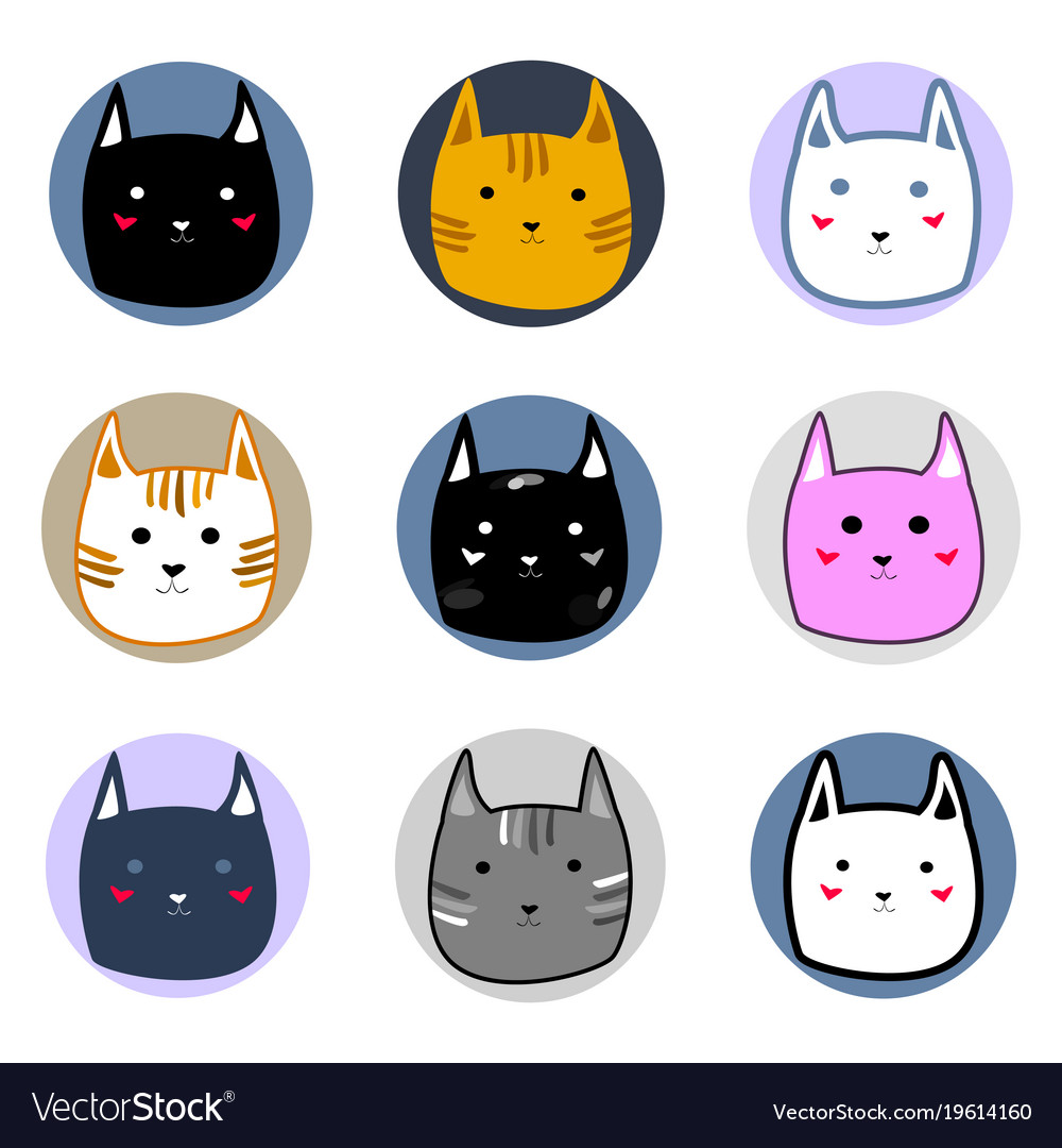 Different cute colorful cat faces in circles