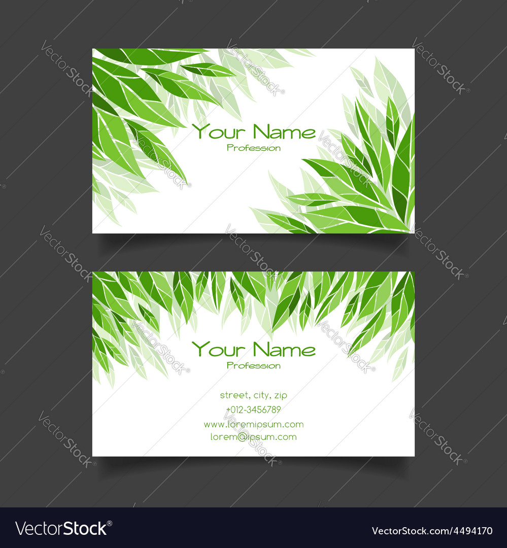 Business card with green leaves template vector image colourmoves