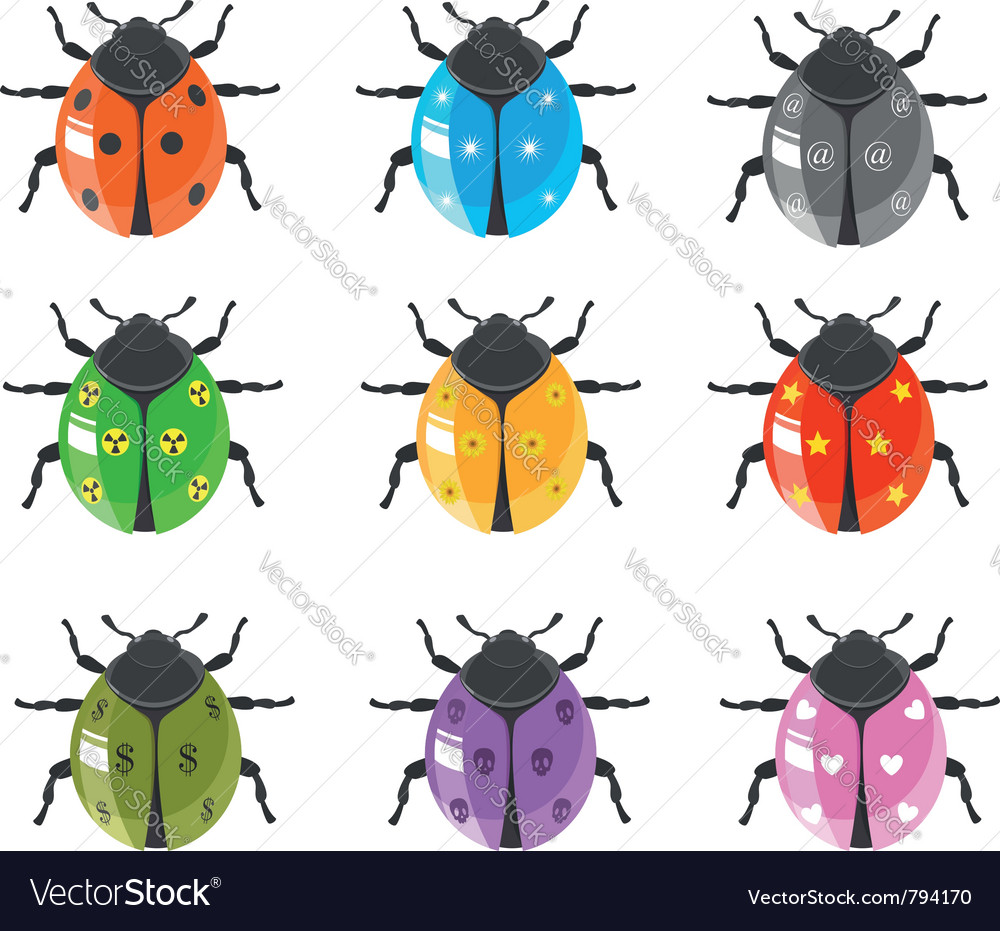 Ladybug insect glossy icon set vector image