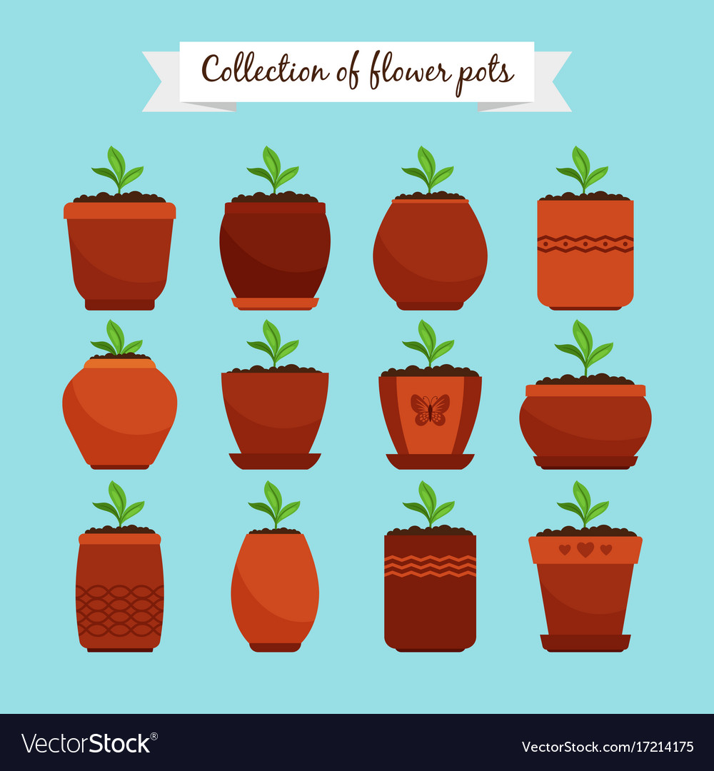 Flowerpots with soil and sprouts