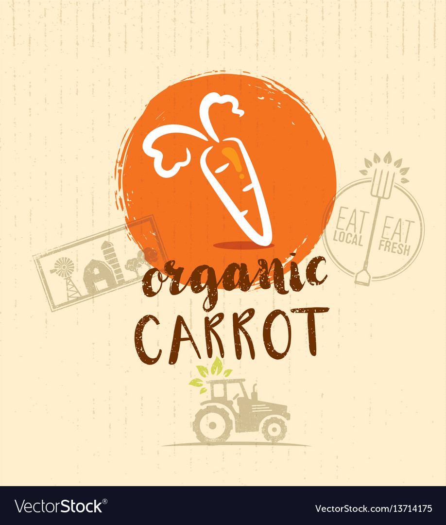 Local farm carrot hand drawn organic vegetable