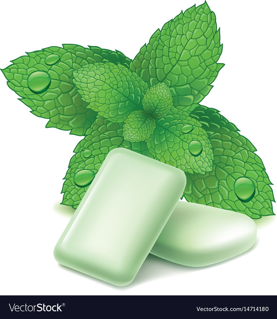 Chewing gum with fresh mint leaves