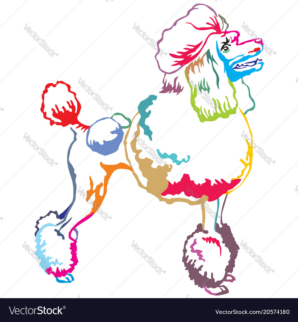 Colorful decorative standing portrait of poodle