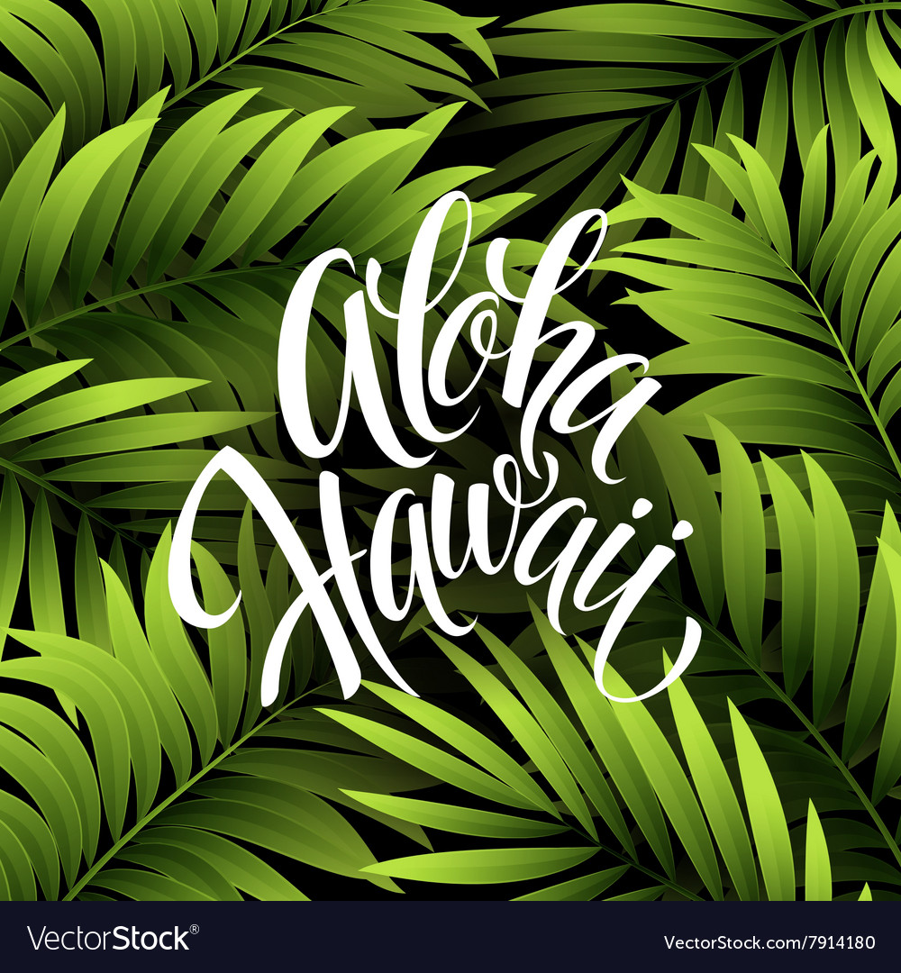 Summer tropical background palm leaves
